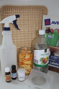 Ingredients for Orange All Purpose cleaner SK
