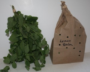 hang air drying herbs
