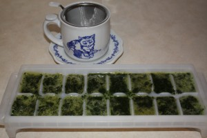 Ice cube freezing of herbs